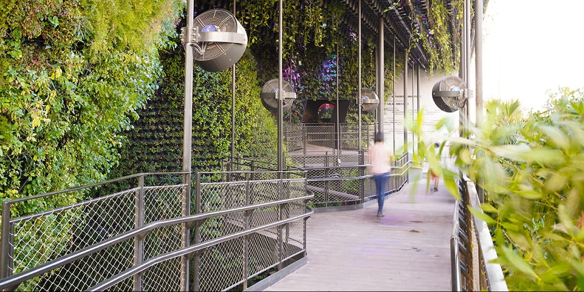 Singapore Pavilion at World Expo 2020 is a prototype for net-zero urban living, in partnership with Nature