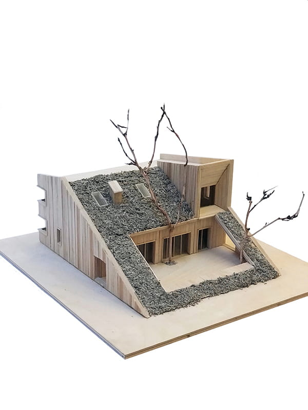Hill House by Snegiri Architects Model Image