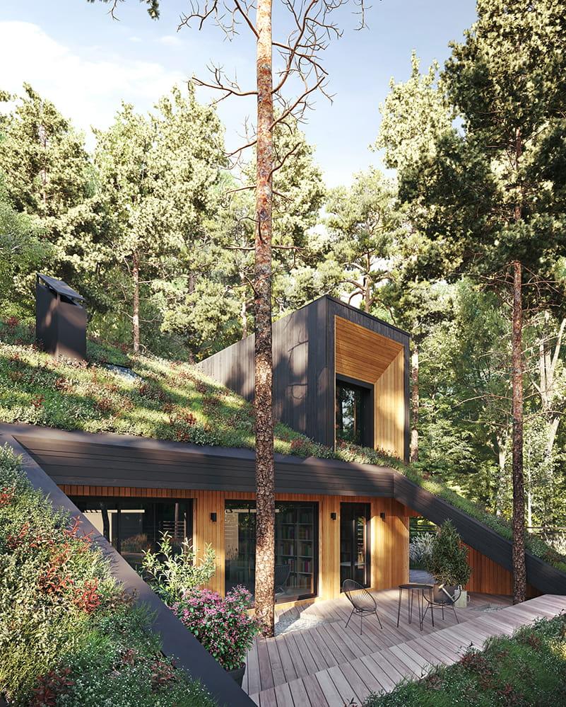 Hill Houe by Snegiri Architects